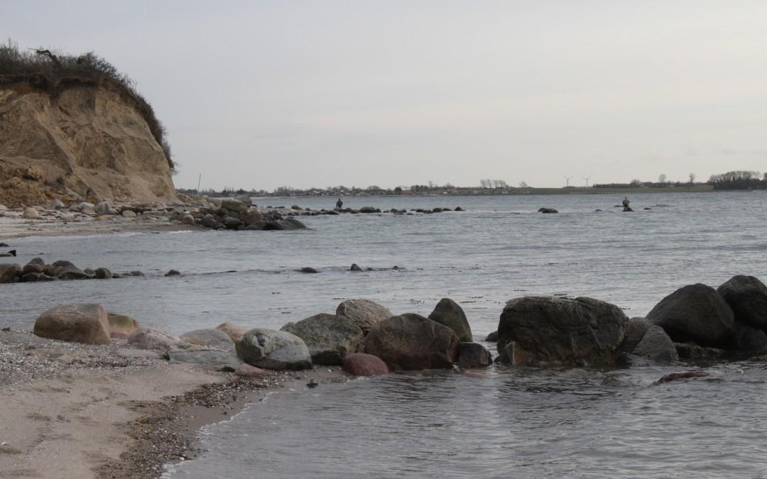 fiskekungens blogg